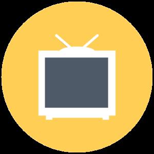 12 Månader IPTV Abonnemang
